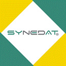 Synedat Consulting GmbH